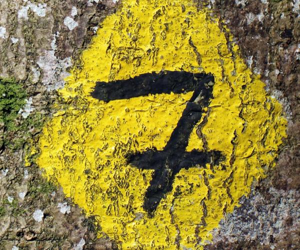 7 Conseils pour fidéliser vos clients